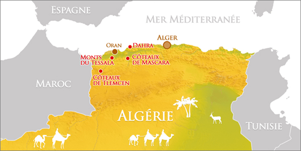 algerian vine map